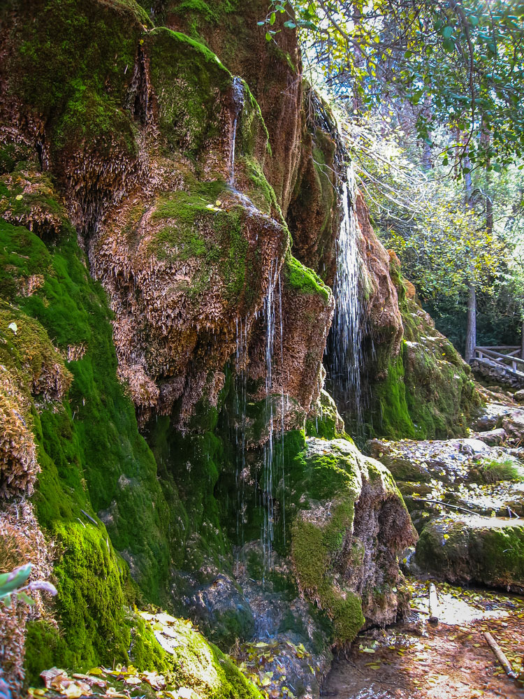 Paraje del nacimiento del río Cuervo en provincia de Cuenca