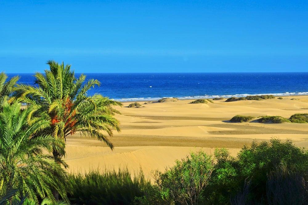 Reserva Natural de las Dunas de Maspalomas en Gran Canaria