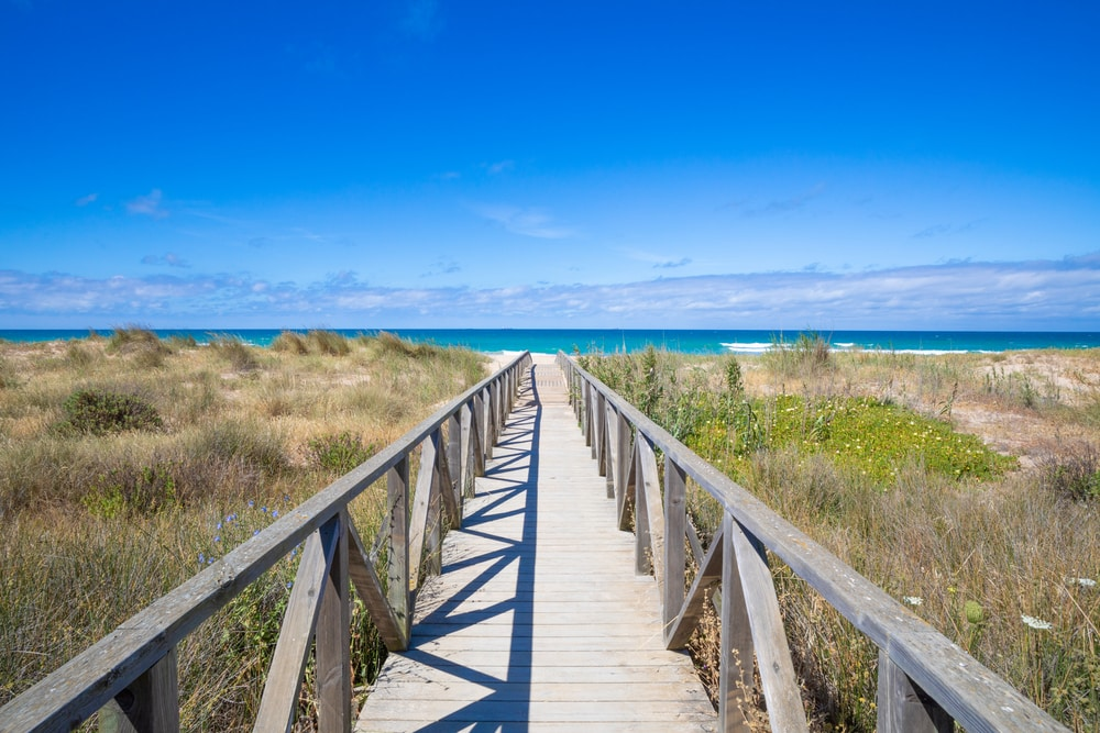 Playa El Palmar Cádiz